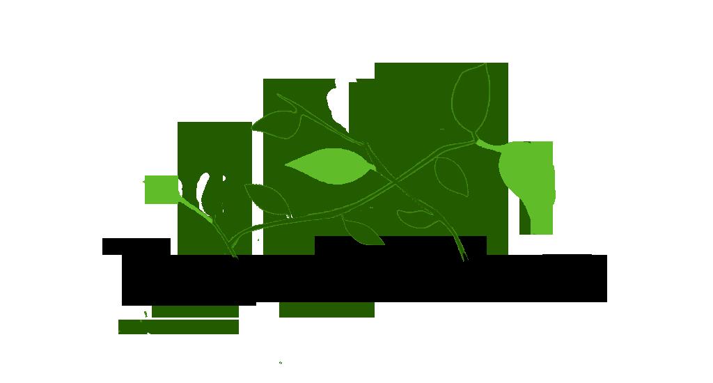Logo Dankowice