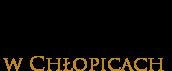 logo biblioteka samorządowa w chłopicach